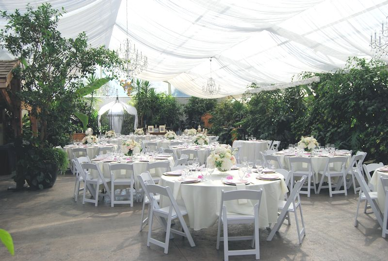 Weddings at Ripples Estate Winery