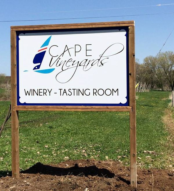 Cape Vineyards - Picton. Ontario